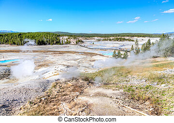 Porcelain Basin Trail at Norris Geyser Basin in Yellowstone National Park