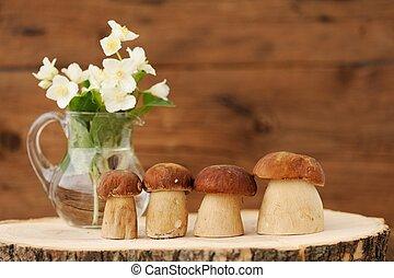 Porcini mushrooms (Boletus edulis) stand on wooden background with jasmine in glass jar copyspace horizontal