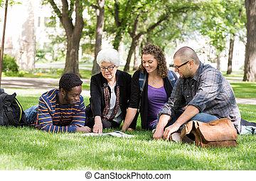 porcja, studenci, profesor, kolegium