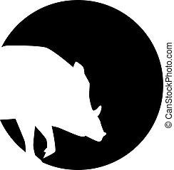 porco selvagem, silueta, frente, um, lua