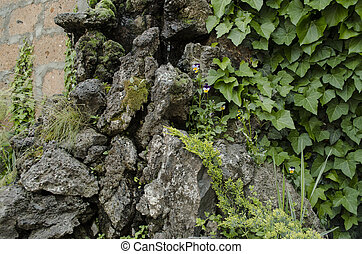 Porous stone covered with moss and