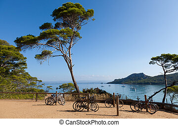 Porquerolles island in France - Porquerolles island in south...