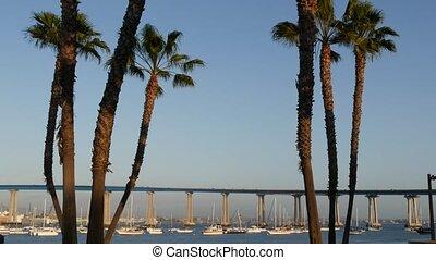 port, mer, san, city., américain, californie, sur, luxe, ancré, voitures, usa., comté, pacifique, baie, transport, océan, diego, pont, coronado, paumes, yachts, célèbre, automobile, infrastructure