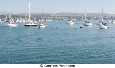 port, propriété, vrai, week-end, orange, usa., recours, plage, côte, luxe, coûteux, banlieue, pacifique, destination, vacances, marina, county., front mer, californie, beachfront, yachts, voiliers, newport