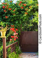 portail, dans, jardin