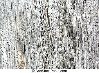 porte, peint, texture, bois, fond, vieux, blanc, grange