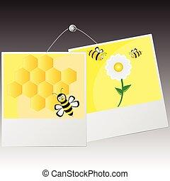 porte-photo, à, mignon, abeille, vecteur, illustration