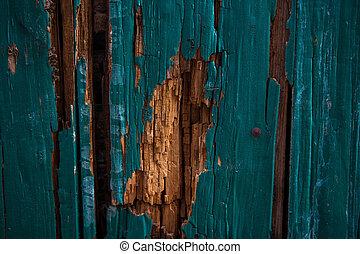 porte, vert, partie, bois, vieux