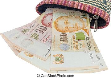 portefeuille, argent, dollars, singapour, arrière-plan., blanc