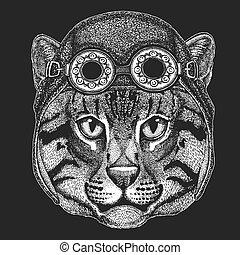 porter, écusson, image, emblème, tatouage, main, motard, chat, peche, animal, sauvage, dessiné, motocyclette, pièce, helmet., aviateur, logo, frais