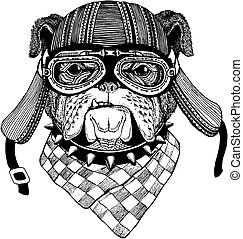 porter, écusson, t-shirt., bouledogue, image, emblème, tatouage, main, motard, pièce, motocyclette, animal, sauvage, dessiné, helmet., logo