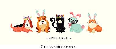 porter, chiens, carte, oeufs, lapin, chats, tenue, panier, paques, costumes, heureux