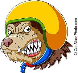 porter, coureur, chien, casque