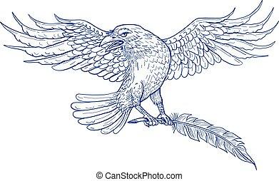 porter, dessin, penne, corbeau