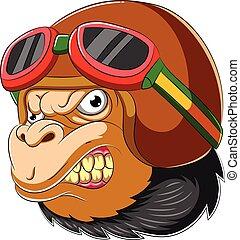 porter, gorille, coureur, casque