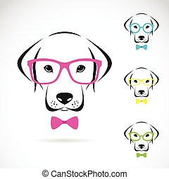 porter, labrador, chien, vecteur, images, lunettes