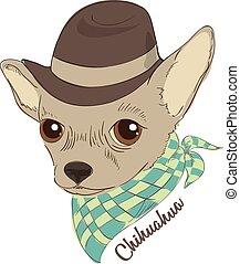 porter, mode, dessiné, cartes, chien, illustration, main, t-shirt, chihuahua, vecteur, cravat., portrait, hipster, placard., chapeau, impression