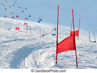 portes, slalom, parallèle, ski
