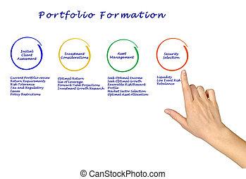 portfolio, formação