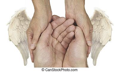 portie, symbolisch, handen