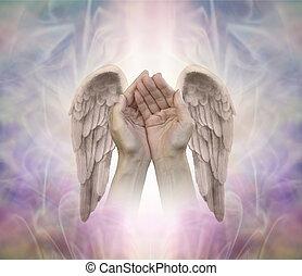 portion, angélique, mains