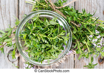 Portion of Winter Savory - Small portion of Winter Savory...