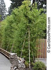 Portland Japanese Garden in Oregon