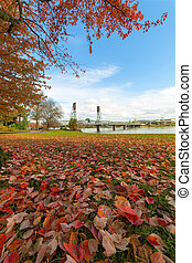 Portland Oregon Downtown Waterfront Park Autumn