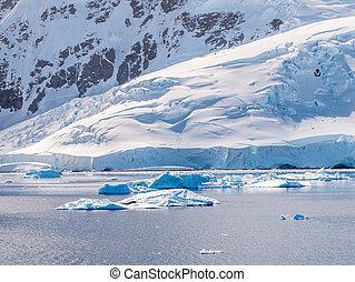 porto, drifting, andvord, península, gelo, baía, antártica, neko, antárctico, selos, floe