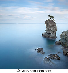 Portofino natural regional park. Lonely pine tree rock and...