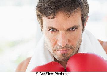 porträt, closeup, mann, boxer, entschlossen