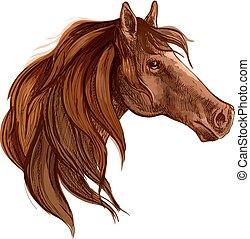 porträt, pferd, mähne, lange bucht