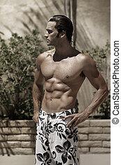porträt, stilisiert, modell, muskulös, schwimmen, nasse, mann, badehose, draußen, schöne