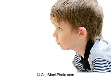 porträt, von, a, kleiner junge, profil
