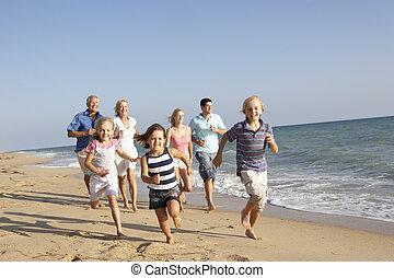 porträt, von, drei erzeugung familie, auf, strand feiertag