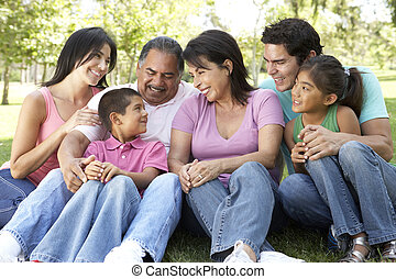 porträt, von, familienkreis, gruppe, park