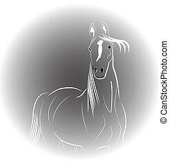 portræt, hest, logo