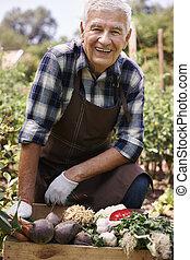 portré, közül, idősebb ember, farmer, noha, szerves, növényi