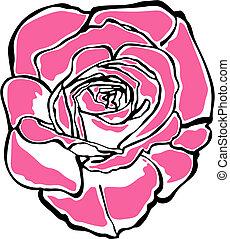 portré, rózsa
