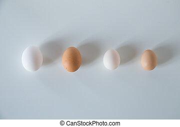 portrét, čtyři, vejce