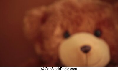 portrait brown teddy bear rack focus - brown teddy bear soft...