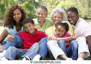 portrait, de, étendu famille, groupe, dans parc