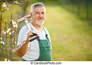 portrait, de, a, beau, homme aîné, jardinage, dans, sien, jardin