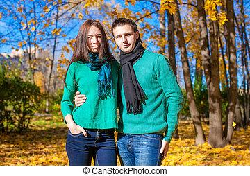 portrait, de, couple heureux, dans, automne, parc, sur, a, ensoleillé, diminuez jour