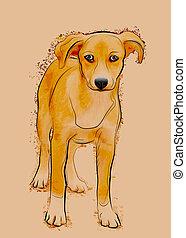 portrait, de, sdf, chien parasite