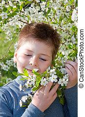 portrait, garçon, fleurs, cerise