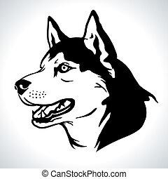 Portrait illustration of Siberian Husky dog breed