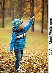 Portrait little boy in autumn park