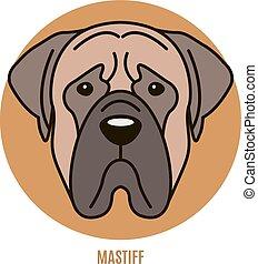 portrait, mastiff