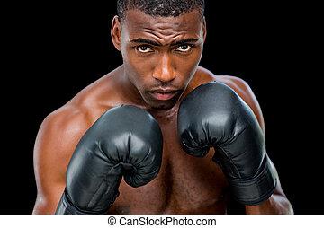portrait, musculaire, sans chemise, position, boxeur,...